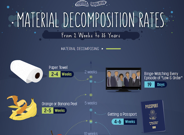 how-long-it-takes-for-trash-to-decompose